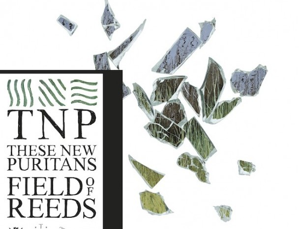 Album Spotlight: These New Puritans – Field of Reeds