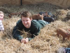 Student Organic Farm welcomes 17 piglets