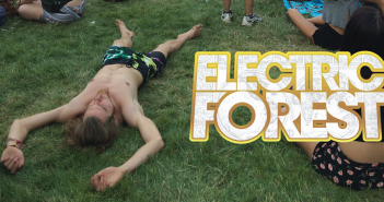 Electric-Forest-WordPress