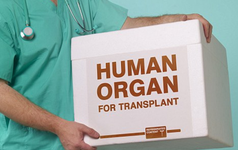 Understanding the organ donation process