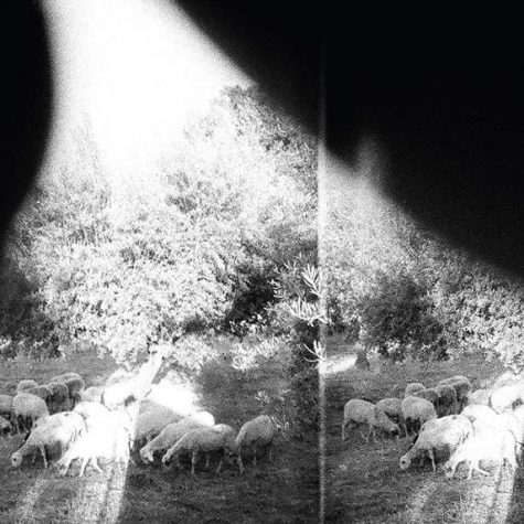 Godspeed You! Black Emperor Album Announced