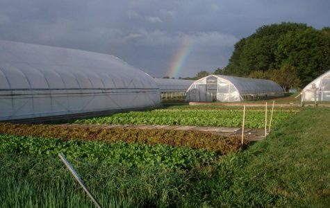 Exposure | Student Organic Farm