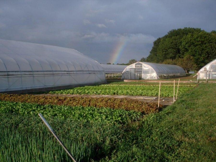 Exposure | Student Organic Farm