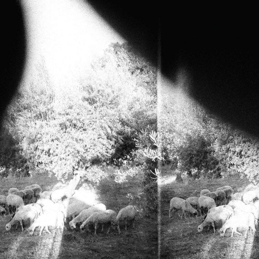 Asunder, Sweet and Other Distress | Godspeed You! Black Emperor