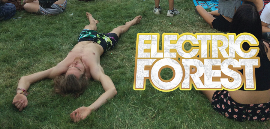 Electric+Forest+2015%3A+The+Forest+Photo+Gallery