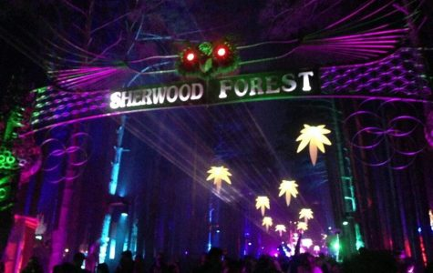 Pure Imagination: Electric Forest 2015