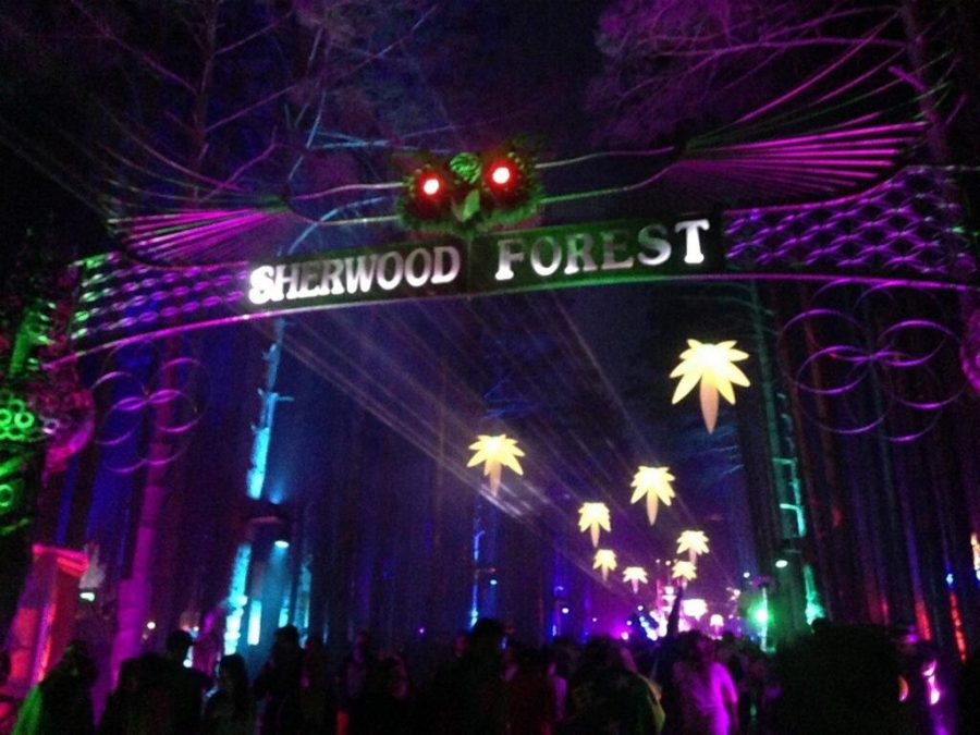Pure+Imagination%3A+Electric+Forest+2015
