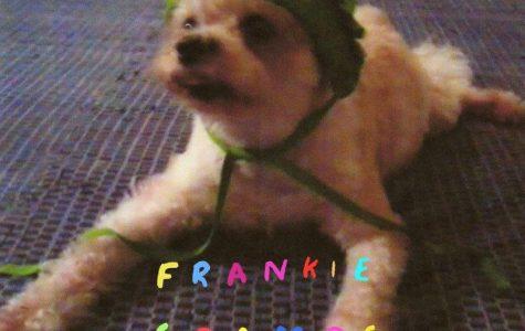 School | Frankie Cosmos