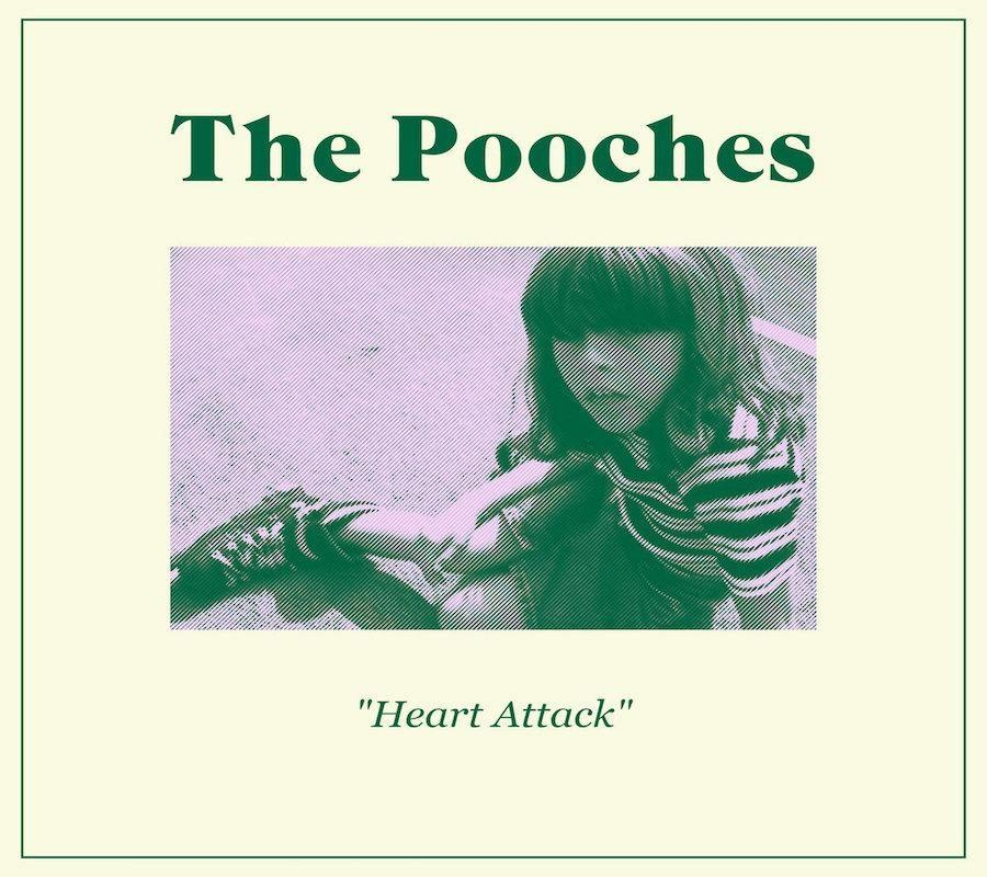 Heart+Attack+%7C+The+Pooches