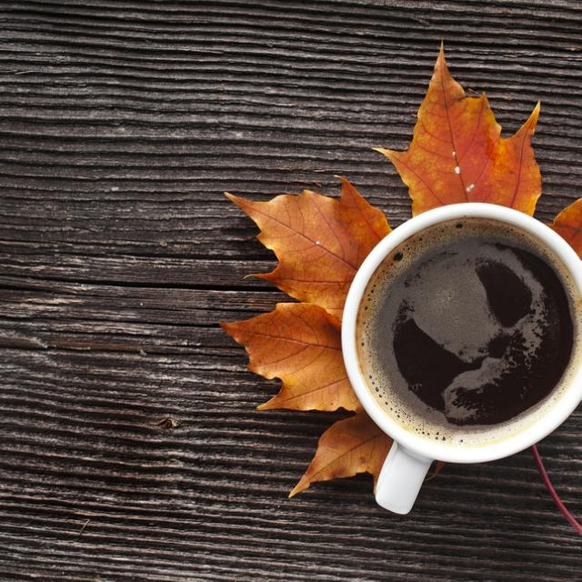 The Weekly List: Fall Mornings