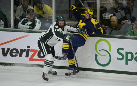 Weekend Hockey Preview: Michigan