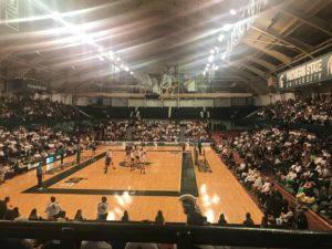 MSU volleyball no match for Gophers in 3-0 loss