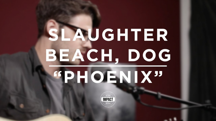 Slaughter Beach, Dog -
