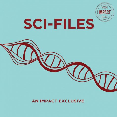 Exposure – 3/24/2019 – I & You, TED x MSU and SciFiles