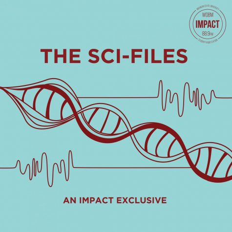 The Sci-Files – 6/2/2019 – Courtney Larson– Aquatic Entomology
