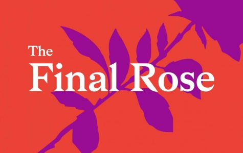 The Final Rose - 2/21/20 - Midnight Chaos