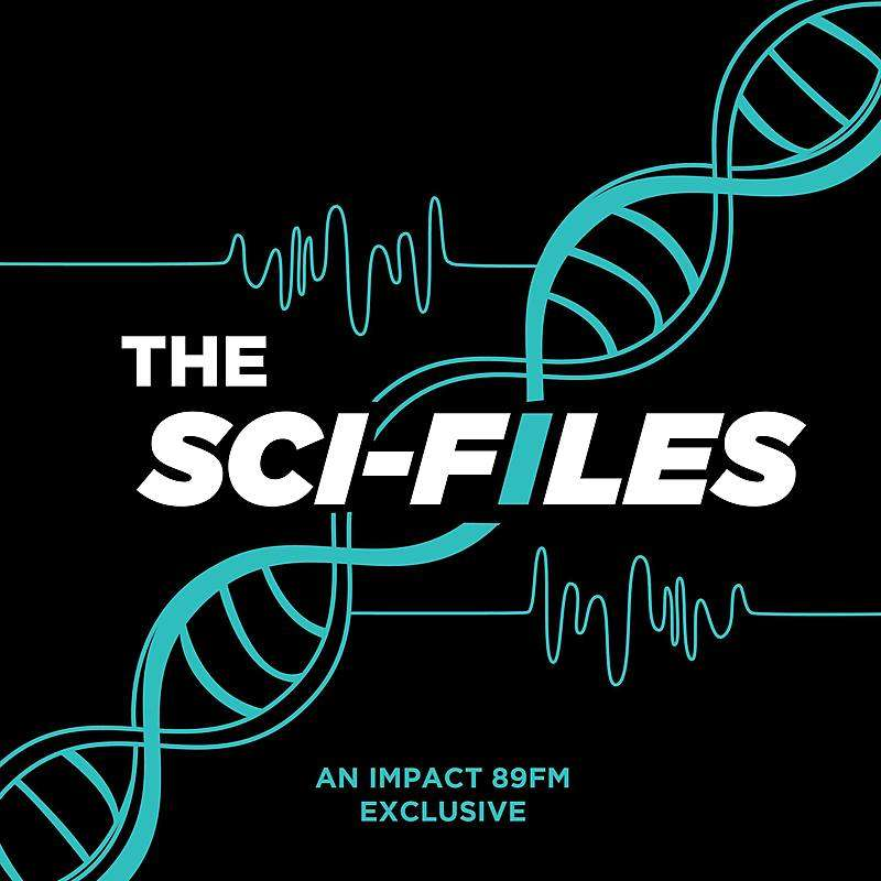 The Sci-Files - 4/28/2019 - Darren Incorvaia - Bumblebees
