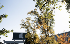 Spartan Stadium in the fall/ Photo Credit: MSU Athletic Communications