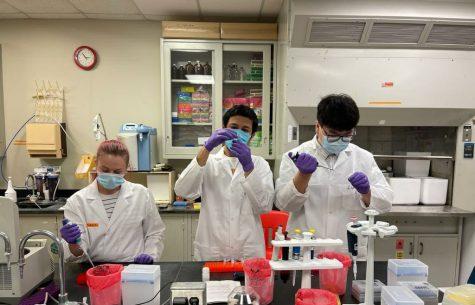 Brijen Miyani, Liang Zhao, and Maddie Spooner in lab