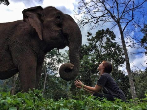 Kelsey Merreck Wagner with an elephant