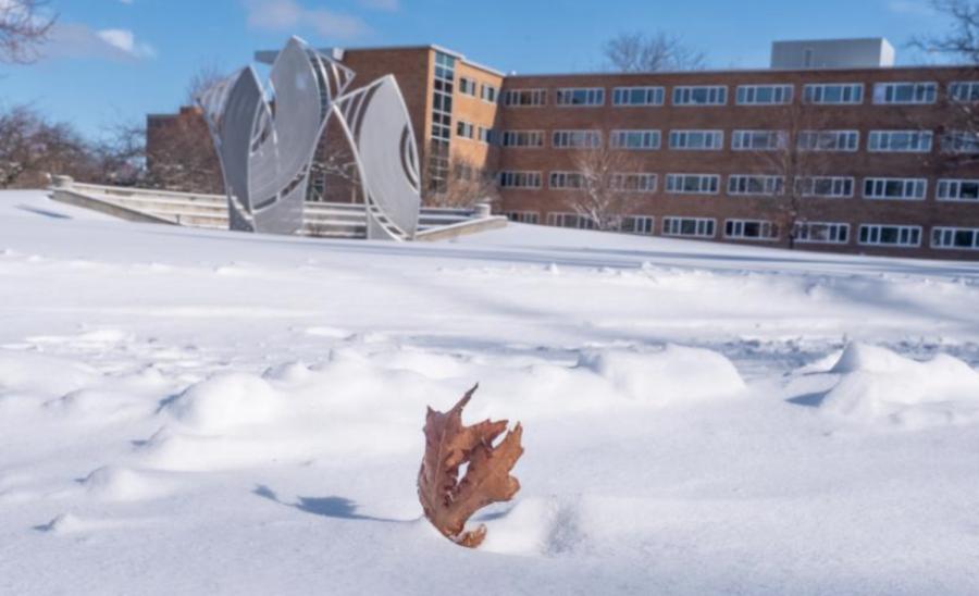 The Brody Neighborhood pavilion/ Photo Credit: MSU University Communications