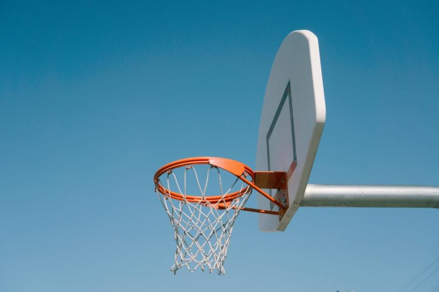 Royalty-free basketball photo