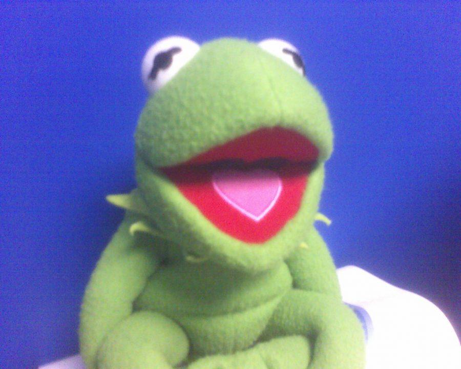 Playlist | frogs
