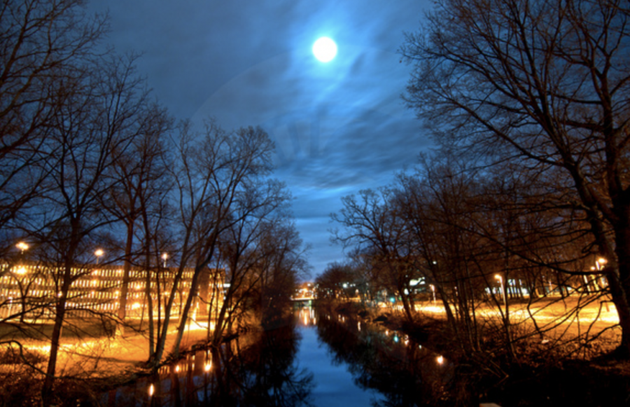 The Red Cedar River at night/ Photo Credit: MSU University Communications